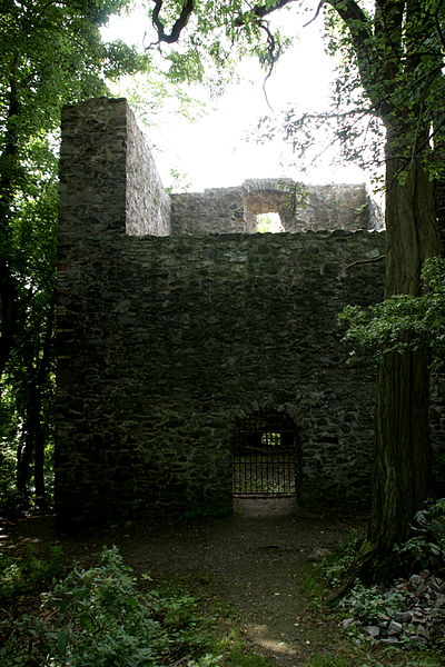Ruins of Frankenstein Castle; alternative view. Author:Frank VincentzCC BY-SA 3.0