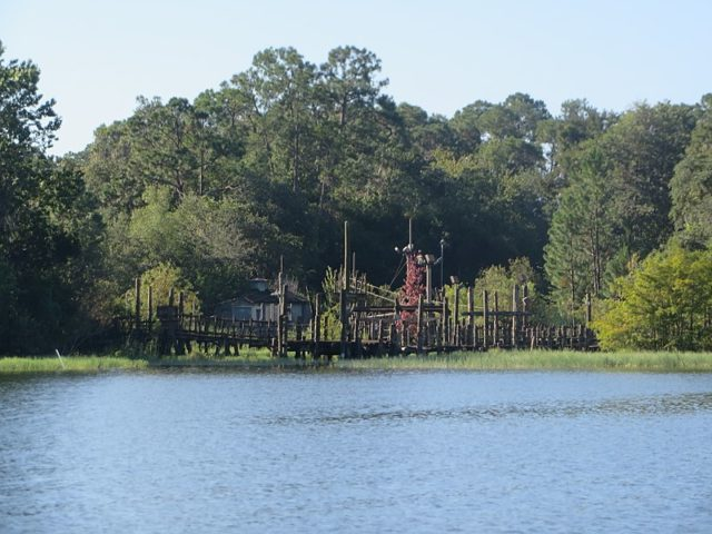 The abandoned Disney's River Country. Author:QuaraxCC BY-SA 4.0