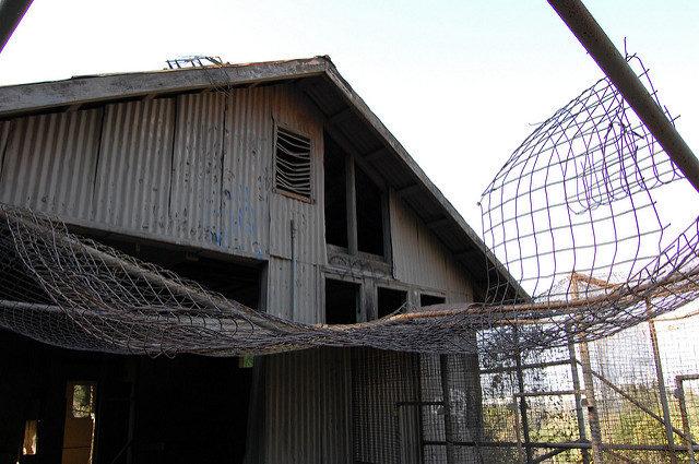 Old Zoo Site, Griffith Park, Los Ángeles, California/ Author: Omar Bárcena – CC BY 2.0