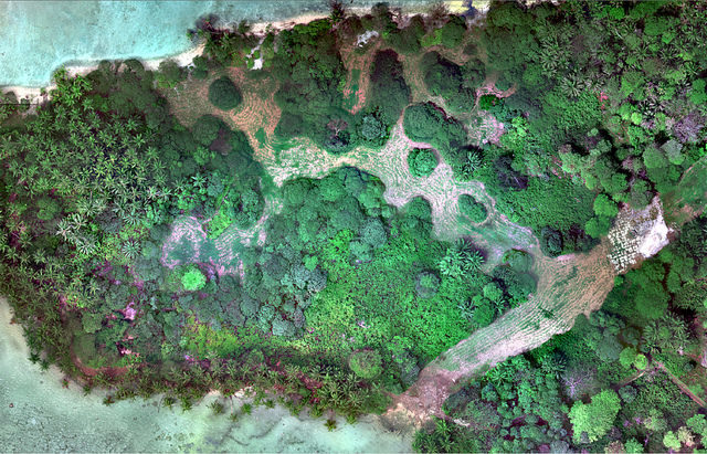 Natural Color (RGB) image of Palmyra Atoll – Author: USGS Unmanned Aircraft Systems – CC BY 2.0
