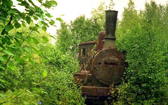 The forgotten locomotive. Author:Сергей МетикCC BY 3.0