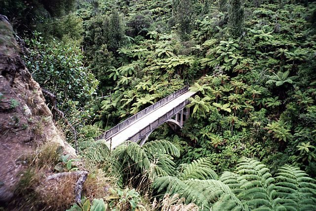 The bridge is constructed over Maungaparua Stream in New Zealand. Author: Joerg Mueller – CC BY 2.5