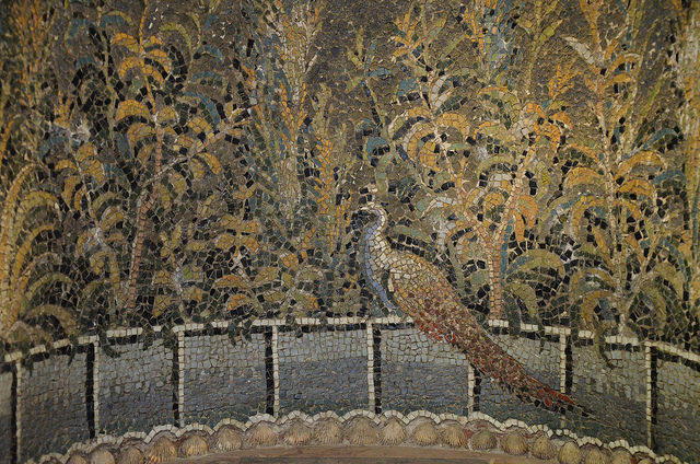 Mosaic niche from Baiae with garden scene, a peacock on a fence with other birds and leafy plants, 1st century – Author: Carole Raddato – CC BY 2.0