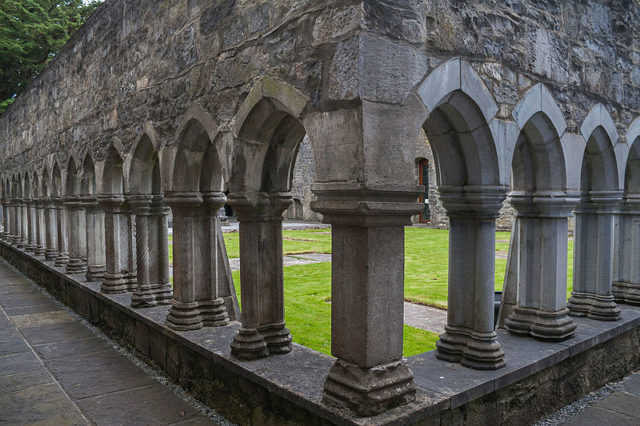 View of the cloister. Author:Andreas F. Borchert –CC BY-SA 4.0