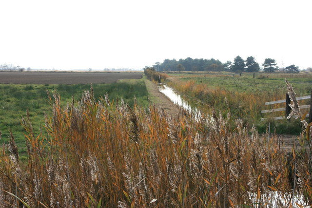 Drainage ditch near Brograve Mill/ Author: Paul Smith – CC BY-SA 2.0