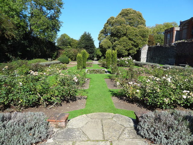 Part of the garden. Author: Dudley Miles – CC BY-SA 3.0