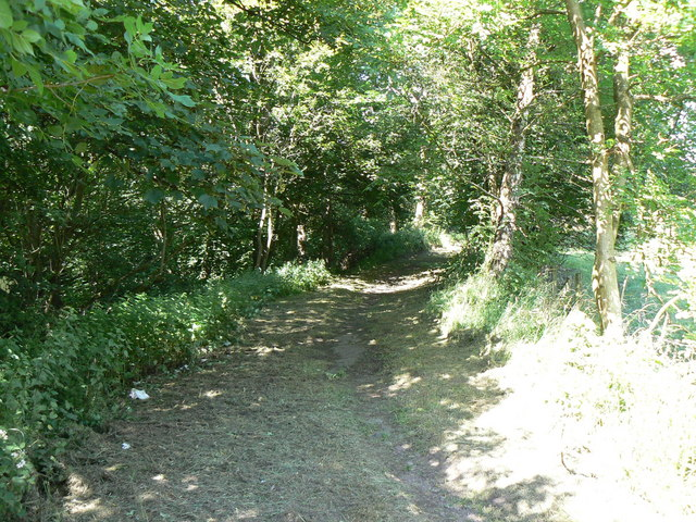 The path to Torwood Castle/ Author: James Allan – CC BY-SA 2.0