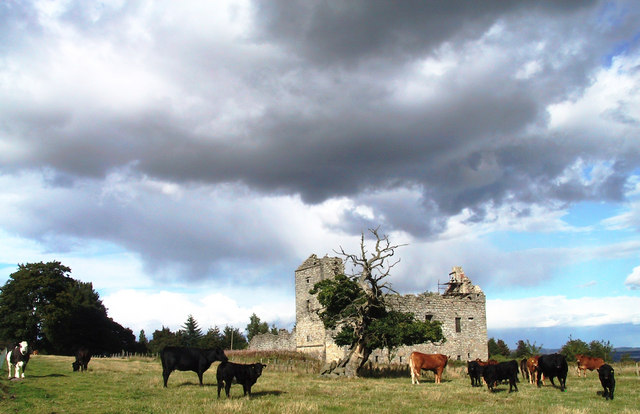The field around the ruins is partly overgrown/ Author: Peter Gordon – CC BY-SA 2.0
