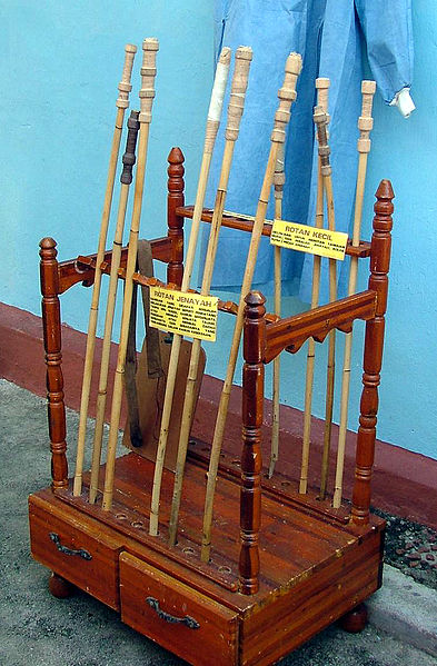 "Two types of canes: The description reads ""Rotan Jenayah"" (Crime Rotan) and ""Rotan Kecil"" (Small Rotan)"