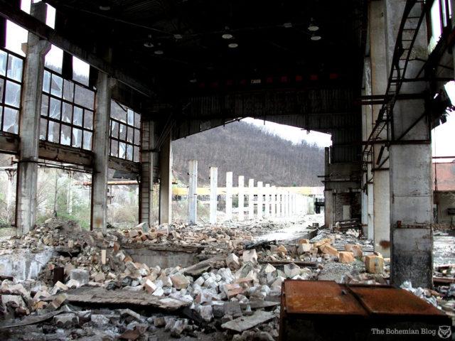 Author: Darmon Richter | www.thebohemianblog.com