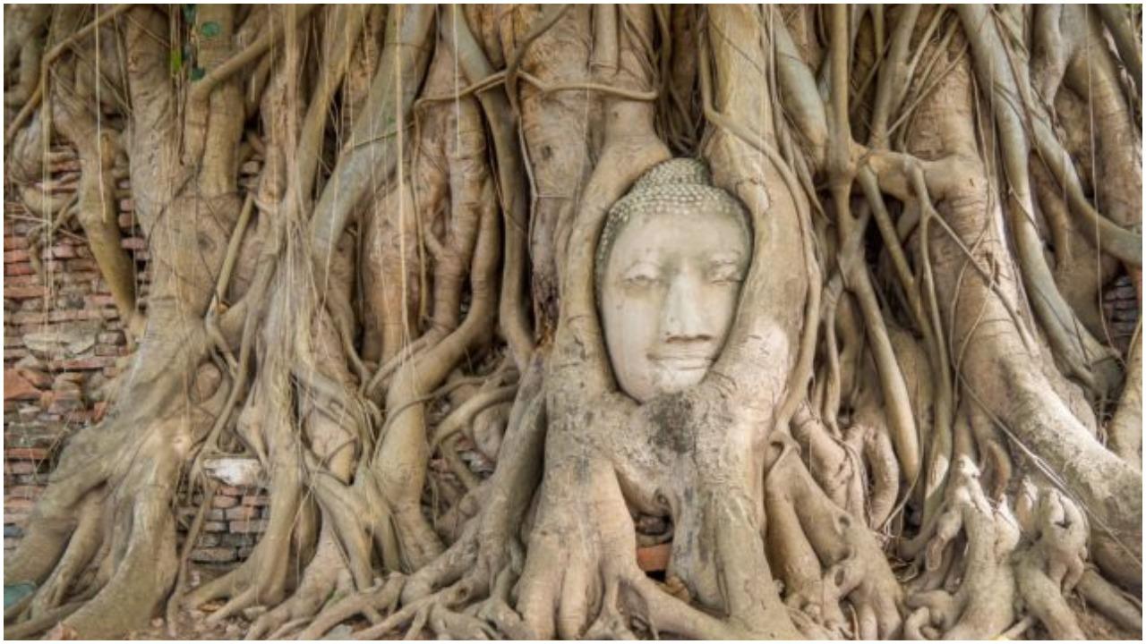 Wat Phra Mahthat. Author: Erik Haze | Behance @ErikHaze