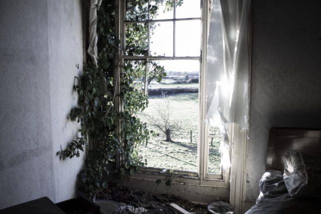 Author: Olivia Shepherd – os-photography.co.uk