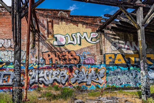 Author: Jim Maurer – Flickr @schaffner