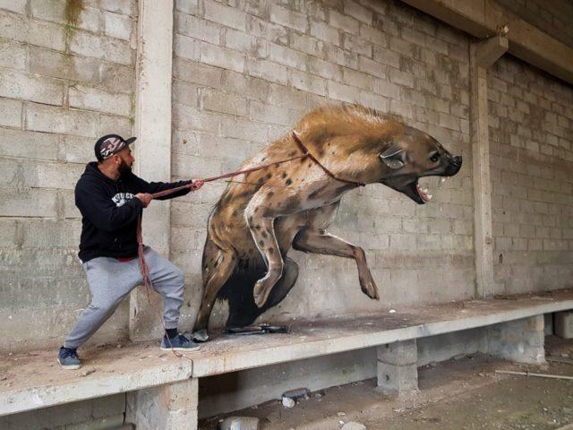Hyena. By Sérgio Odeith