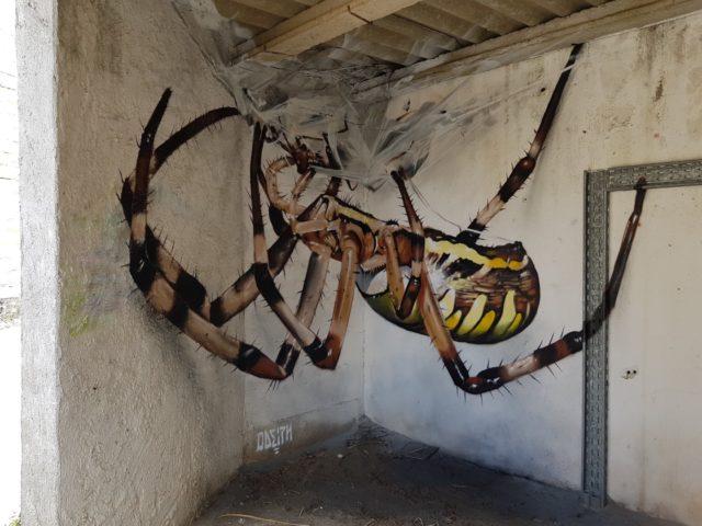 Spider. By Sérgio Odeith