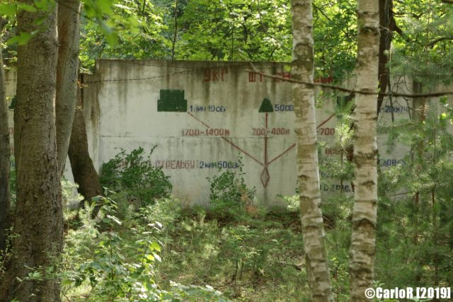 Exterior cement wall with writing on it, surrounded by forest vegetation