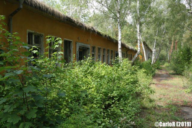 Exterior of Forst Zinna blocked by forest vegetation