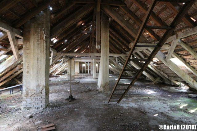 Empty attic with a ladder leading to a second storey