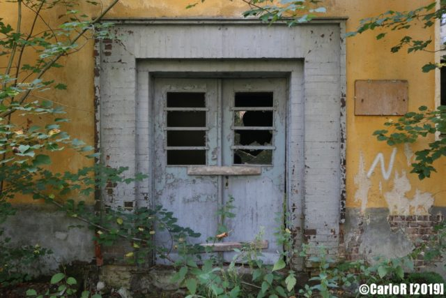 Closed double doors surrounded by forest vegetation