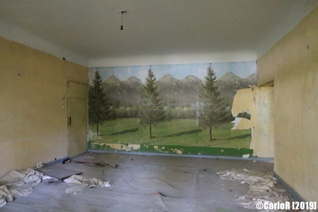 Forest mural on the far wall of a yellow-colored room